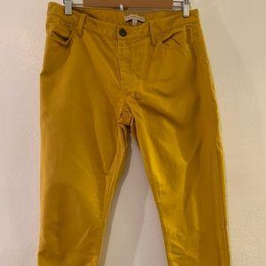 Mustard color pants